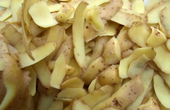 Turning the humble potato into high-value plant-based food ingredient